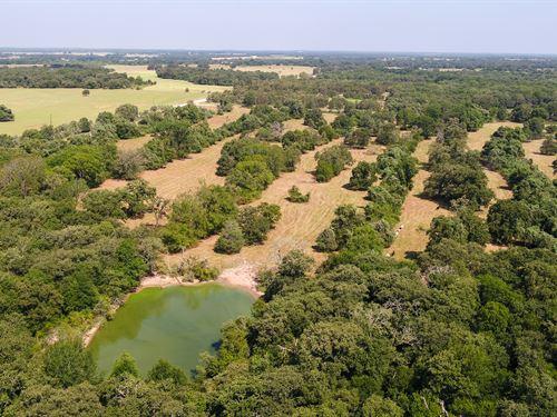 100 Acre Dream Ranch : Rockdale : Milam County : Texas