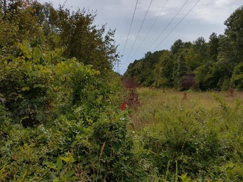 Homesite, Farm OR Hunting Track : Eagle Springs : Moore County : North Carolina