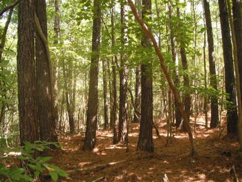 27 Acres, Chester County, SC : Chester : South Carolina
