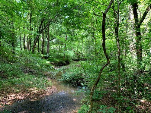 40 Acres With Creek : Ashland : Clay County : Alabama