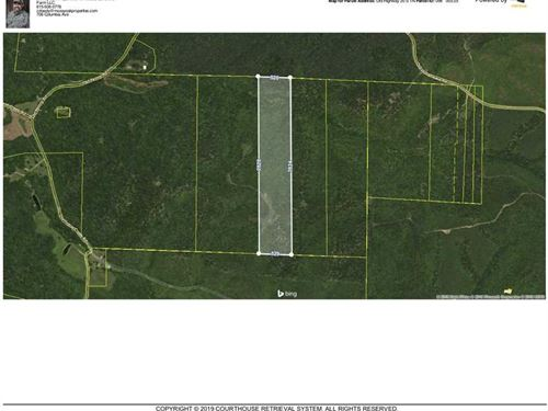 72 Acre Bow Hunters Dream Property : Linden : Perry County : Tennessee