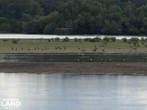 Beech River Duck Hunting And Homesi : Parsons : Decatur County : Tennessee