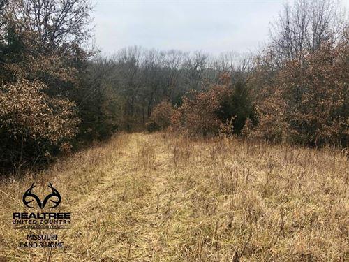 High Quality Realtree UC Hunting : Callao : Macon County : Missouri