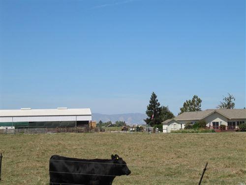Solano County, Northern California : Dixon : Solano County : California