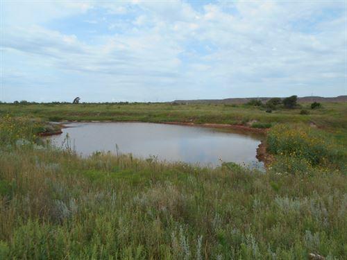 80 Acres M/L, Woods County Oklahoma : Avard : Woods County : Oklahoma