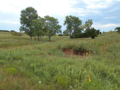 80 Acres M/L Woods County Oklahoma : Avard : Woods County : Oklahoma