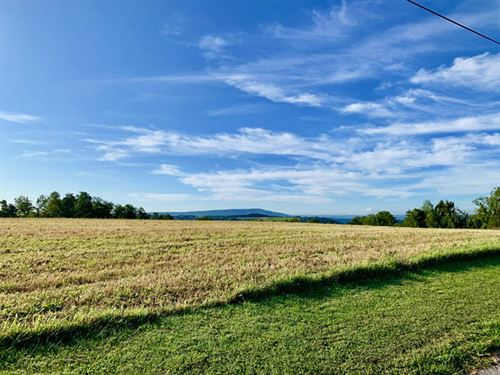 40 +/- Acres Land In Central School : Bloomsburg : Columbia County : Pennsylvania
