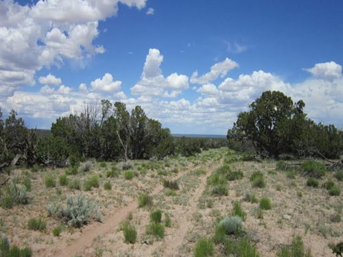 Freedom 40 Acre All To Yourself : Saint Johns : Apache County : Arizona