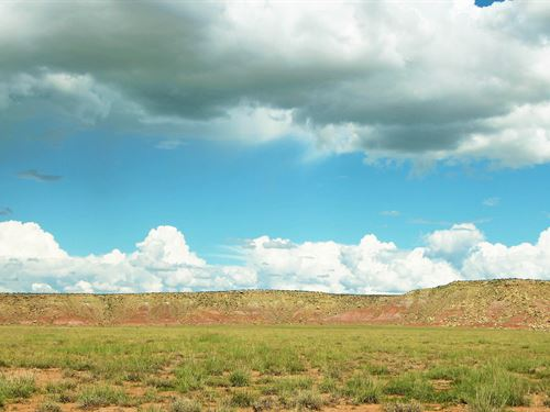 40 Acre Northwest Arizona Bargain : Seligman : Yavapai County : Arizona