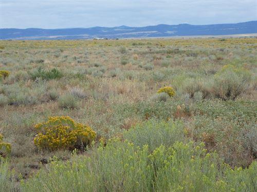 40 Acres In Conejos County Co : La Jara : Conejos County : Colorado