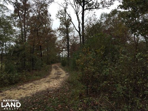 St Clair Cr-33 Homesite & Timber Tr : Ashville : Saint Clair County : Alabama