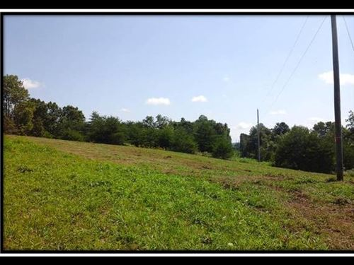 Beautiful Open Pasture And Woods : Corning : Perry County : Ohio