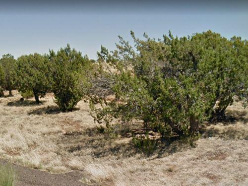 A 5.11 Acre Property : Snowflake : Navajo County : Arizona
