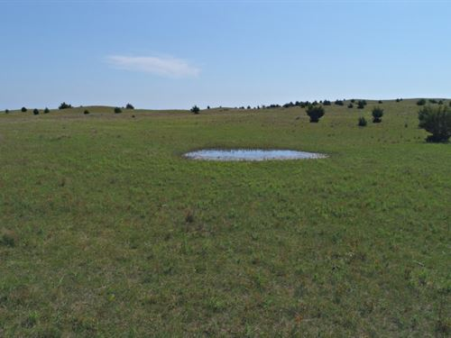 Brown County Wildlife : Johnstown : Brown County : Nebraska