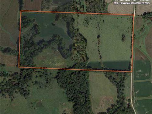 Great 80 Acre Hunting Tract : Calhoun : Henry County : Missouri