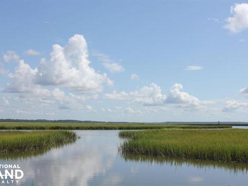 Russell Creek Preserve Deep Water : Edisto Island : Charleston County : South Carolina