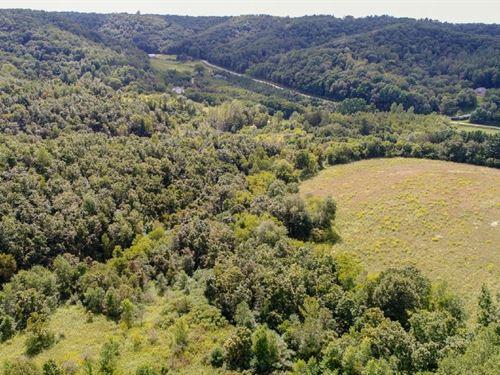 Monroe County Private Wildlife : Leon : Monroe County : Wisconsin