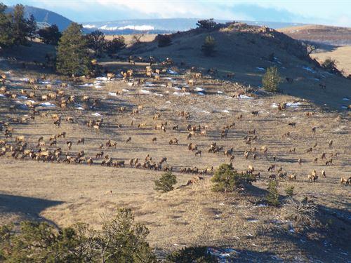Blazing Star Ranch : Laramie : Albany County : Wyoming