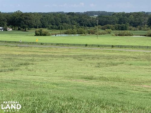 Farm, Fish And Duck Ponds : Townville : Anderson County : South Carolina