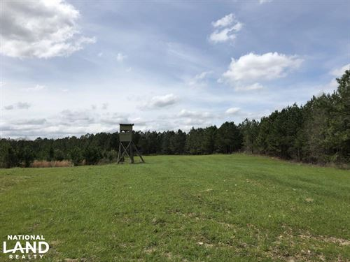 Lake Martin Hunting And Timber Inve : Eclectic : Elmore County : Alabama