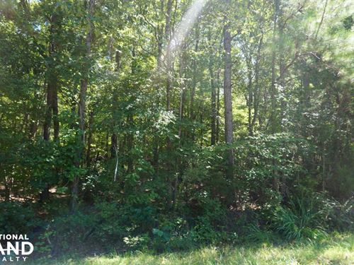 Freedom Farm Road Tract : Pine Apple : Wilcox County : Alabama
