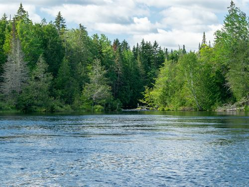 Waterfront Acreage Kennebec River : Somerset Junction : Somerset County : Maine