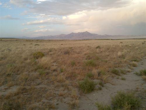 39.89 Acre Wide Open Space : Winnemucca : Humboldt County : Nevada