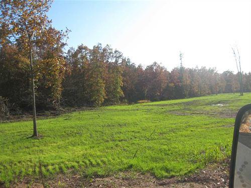 Very Reasonable 400 Acres Texas CO : Hartshorn : Texas County : Missouri