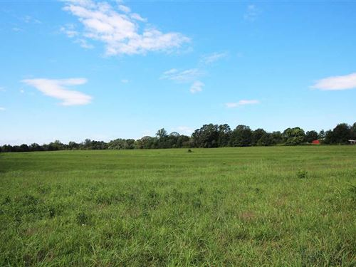 59.33 Acres in Forest City, Ru : Forest City : Rutherford County : North Carolina