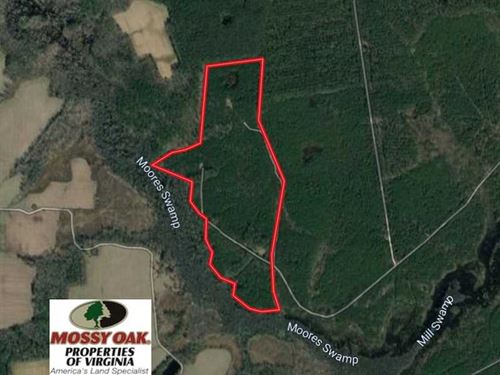 100 Acres of Hunting Land For Sale : Elberon : Surry County : Virginia