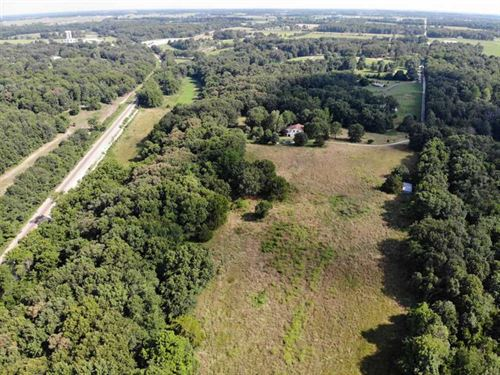 18 Acres of Wildlife Wonder : Rogersville : Greene County : Missouri