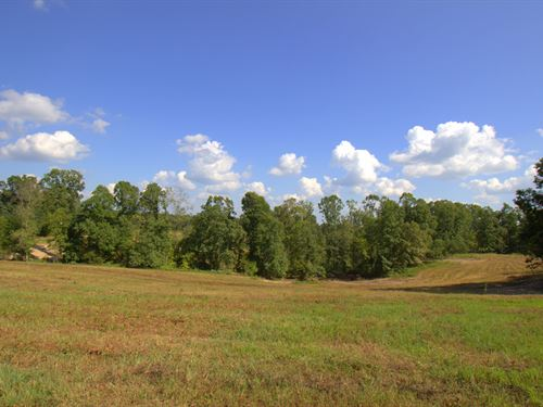 Great 65 Acre Tract : Cumberland Furnace : Dickson County : Tennessee