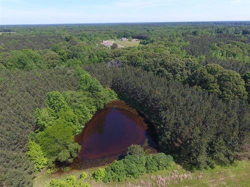 80 Ac, Woods, 2 Ponds, Barn, Open : Sardis : Panola County : Mississippi