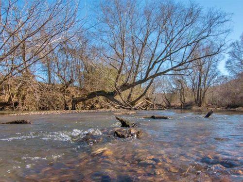 263 Acres Hunting Timberland On Bea : Vina : Franklin County : Alabama