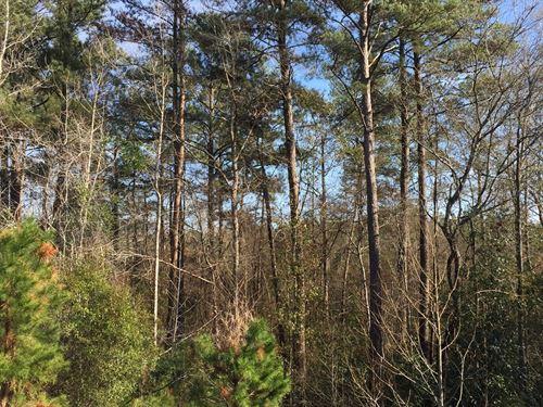 Recreation Or Home Tract Elba : Elba : Coffee County : Alabama
