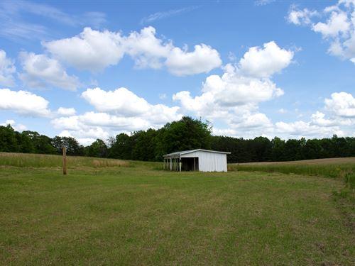 McDaniel Homestead / Development : Easley : Pickens County : South Carolina