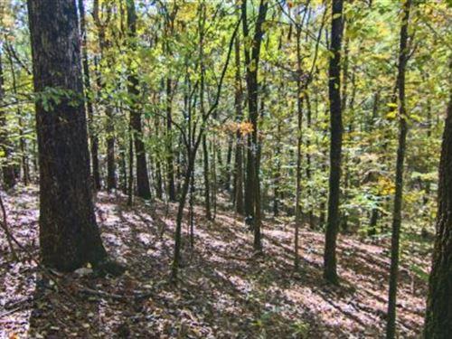 1100+/- Saugahatchee Creek : Dadeville : Tallapoosa County : Alabama