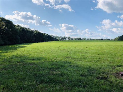 Pasture Woods Creeks And Barns : Chancellor : Geneva County : Alabama