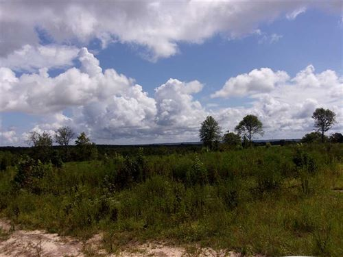 27.60 Acre Tract in Eufaula, AL : Eufaula : Barbour County : Alabama