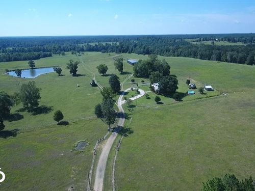 Sprawling 346 Acre Ranch And Homesi : Woodville : Tyler County : Texas