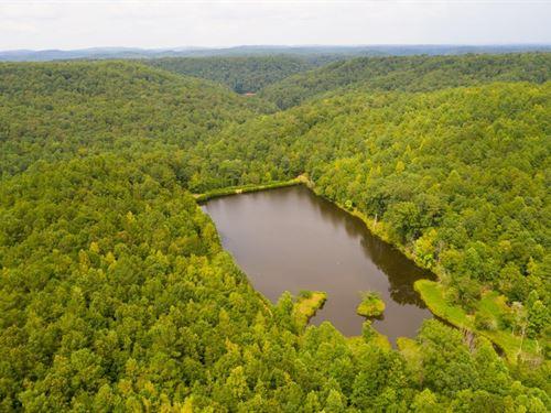 Pine Mountain Lake And Timber : Remlap : Blount County : Alabama