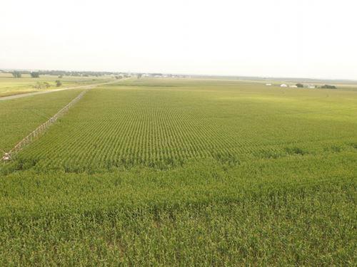 Wallace Farm Auction Parcel 1 : Wallace : Lincoln County : Nebraska