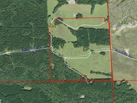 Pasture Land & Recreational Tract : Hurtsboro : Russell County : Alabama