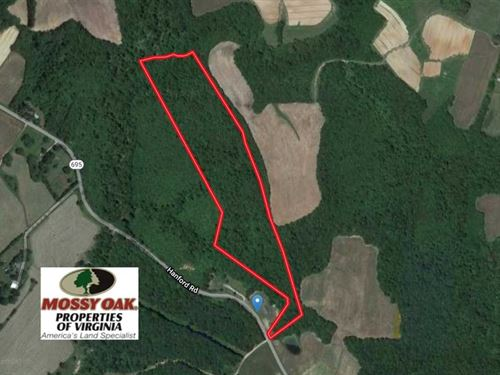 25 Acres of Hunting Land For Sale : Skipwith : Mecklenburg County : Virginia