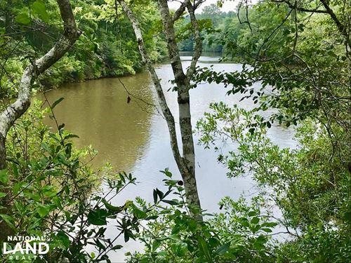Patsaliga River Hunting & Timber In : Red Level : Covington County : Alabama