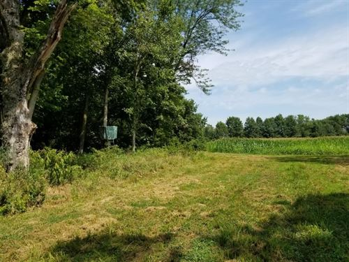 Realtreeuc Hunting Tract Tillable : Laclede : Linn County : Missouri