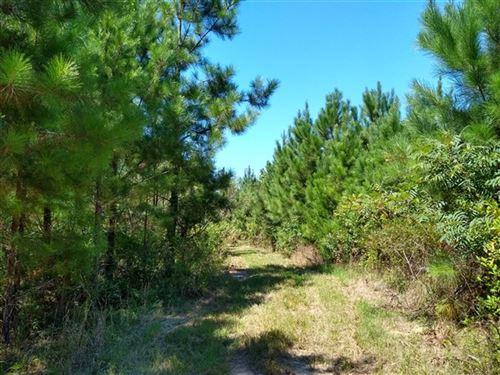 150 Acres, Laurens County, Sc : Clinton : Laurens County : South Carolina