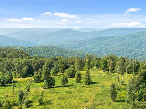 Private Cumberland Plateau Acreage : Winchester : Franklin County : Tennessee