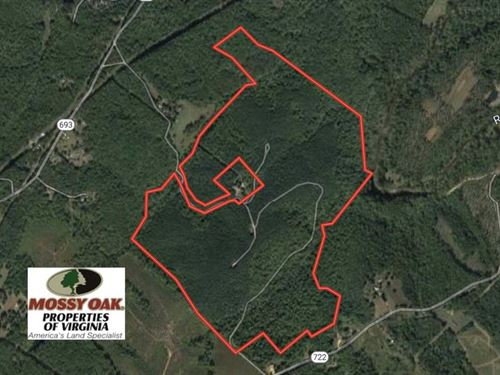 193 Acres of Timber And Recreation : Schuyler : Nelson County : Virginia
