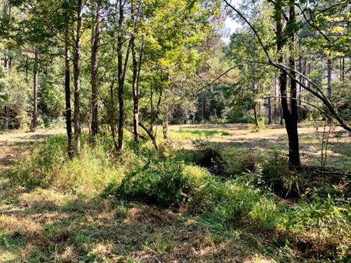 28.52 Acres Land For Sale Magnolia : Magnolia : Pike County : Mississippi